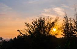 hemel in ochtendtijd met silhouetboom Royalty-vrije Stock Foto