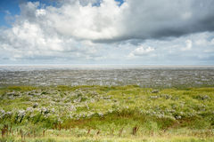 Hemel in Waddenzee in het noorden van Nederland Stock Fotografie
