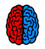 Hemisfério esquerdo e direito do cérebro ilustração royalty free