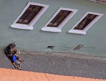 Hemlöns, den smutsiga kvinnan och hennes son liying på gataasfalt i Sibiu, Rumänien Royaltyfri Bild