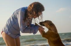 Hemlös hund för härlig smekning för ung kvinna på stranden arkivbilder