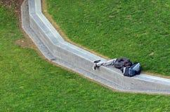 Hemlös sömn i Myers Park i Auckland Nya Zeeland Arkivfoto