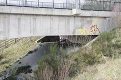 Hemlös uppehälle under en bro arkivbilder