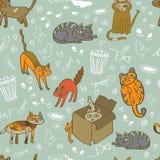 hemlösa katter stock illustrationer