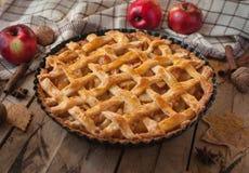 Hemlagad äppelpaj på träbakgrund royaltyfri foto
