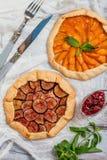 Hemlagad aprikos- och fikonträdgalette royaltyfri bild