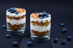 Hemlagad bakad granola med yoghurt och blåbär i ett exponeringsglas på royaltyfri bild