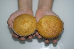 hemlagad cake Royaltyfri Foto