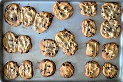 Hemlagad choklad Chip Cookies på en bakplåt Arkivbild