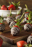 Hemlagad choklad doppade jordgubbar Royaltyfria Bilder
