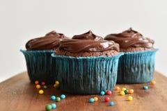 Hemlagad chokladmuffin med stänk Royaltyfri Foto