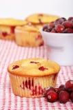 hemlagad citronmuffin för cranberry fotografering för bildbyråer