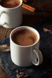 Hemlagad europeisk dricka choklad Royaltyfri Fotografi