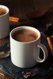 Hemlagad europeisk dricka choklad Royaltyfri Foto