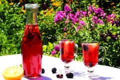 Hemlagad fruktlemonad är i en flaska och exponeringsglas på tabellen i den öppna luften Fotografering för Bildbyråer