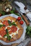Hemlagad galette med tomater och ost lantligt fotografering för bildbyråer