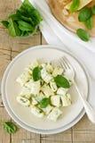 Hemlagad gnocchi med ricotta, ost och spenat på en ljus platta royaltyfri fotografi
