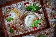 Hemlagad gräddost från get` s mjölkar Arkivfoton