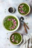 Hemlagad grön soppa för vårspenatkräm som dekoreras med vattenmelonrädisan, svart sesamfrö och microgreens fotografering för bildbyråer