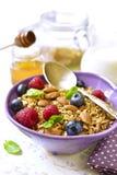 Hemlagad granola med det nya bäret för en frukost i en lila bo Royaltyfri Fotografi