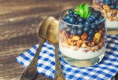 Hemlagad granola, mysli med blåbäret och yoghurt i exponeringsglas royaltyfria bilder
