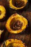 Hemlagad grillad ekollonsquash Royaltyfri Fotografi