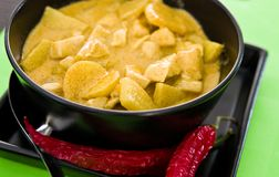 Hemlagad höna med currysås, thailändskt recept Royaltyfri Foto