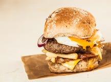 Hemlagad hamburgare med lilla pastejen, ost och småfiskar arkivfoton