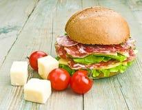 Hemlagad hamburgare med nya grönsaker Royaltyfri Bild