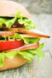 Hemlagad hamburgare med nya grönsaker Royaltyfria Foton