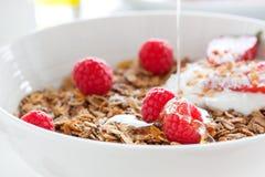 """Hemlagad havremålgranola eller mysli med hallon och jordgubbe med yoghurt och honung för ny sommarfrukt†""""i en vit bunke Royaltyfri Foto"""
