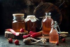 Hemlagad jäst jordgubbe- och rabarberkombucha Sund naturlig probiotic smaksatt drink royaltyfri bild