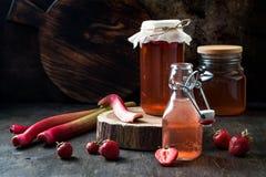 Hemlagad jäst jordgubbe- och rabarberkombucha Sund naturlig probiotic smaksatt drink arkivbild