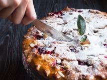 Hemlagad körsbärsröd paj med mandeln och pudrat socker Arkivbilder