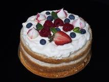 Hemlagad kaka med den krämiga dekoren på en svart bakgrund Fotografering för Bildbyråer