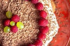Hemlagad kaka med hallon- och chokladnärbild royaltyfri foto