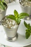 Hemlagad Kentucky mintkaramellsötad medicintillsats Arkivfoton
