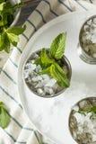 Hemlagad Kentucky mintkaramellsötad medicintillsats Arkivbilder