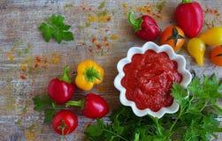 hemlagad ketchup i en kastrull Arkivbilder