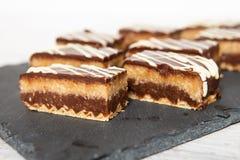 Hemlagad kokoskaka för söt choklad royaltyfria foton