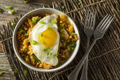 Hemlagad korean Kimchi Fried Rice Royaltyfria Bilder