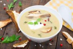 Hemlagad krämig soppa med skivade soppchampinjoner Royaltyfria Foton