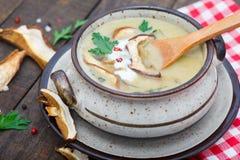 Hemlagad krämig soupe med skivade soppchampinjoner Arkivbild