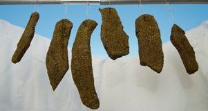 Hemlagad kryddad torr meat arkivbilder