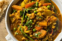 Hemlagad kryddig strikt vegetariangrönsakcurry Royaltyfri Fotografi