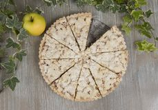 Hemlagad läcker äppelpaj, frasig efterrätt Royaltyfri Bild