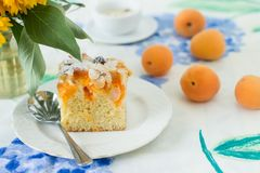 Hemlagad lantlig aprikoskaka på en tabell arkivbilder