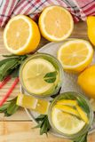 Hemlagad lemonad med mintkaramellen och citronen i plast- exponeringsglas p? en naturlig tr?bakgrund Uppfriskande lemonaddrink To fotografering för bildbyråer