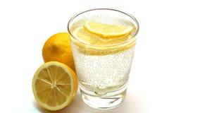 Hemlagad lemonad med nya citrurs Royaltyfri Fotografi