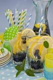 Hemlagad Lemonade arkivfoto
